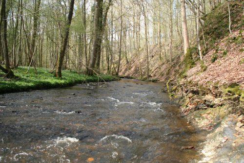 label rivières sauvages - l'Artoise 7