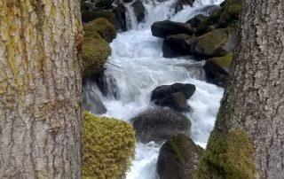 Première rivière des Alpes labellisée - MPC