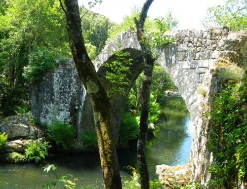Le Taravo est labellisé  : une nature intacte préservée !